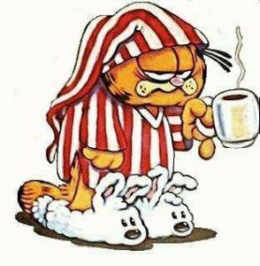 Garfield Sleep