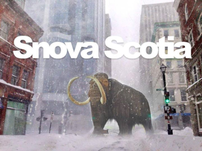 Snova Scotia