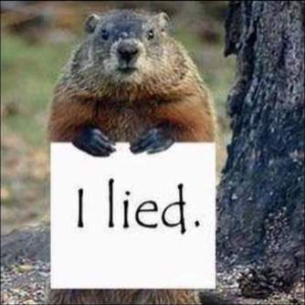 groundhog-liar