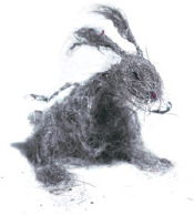 dust bunny 3
